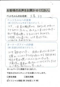 渋谷区 A.T様 土屋ラテちゃん