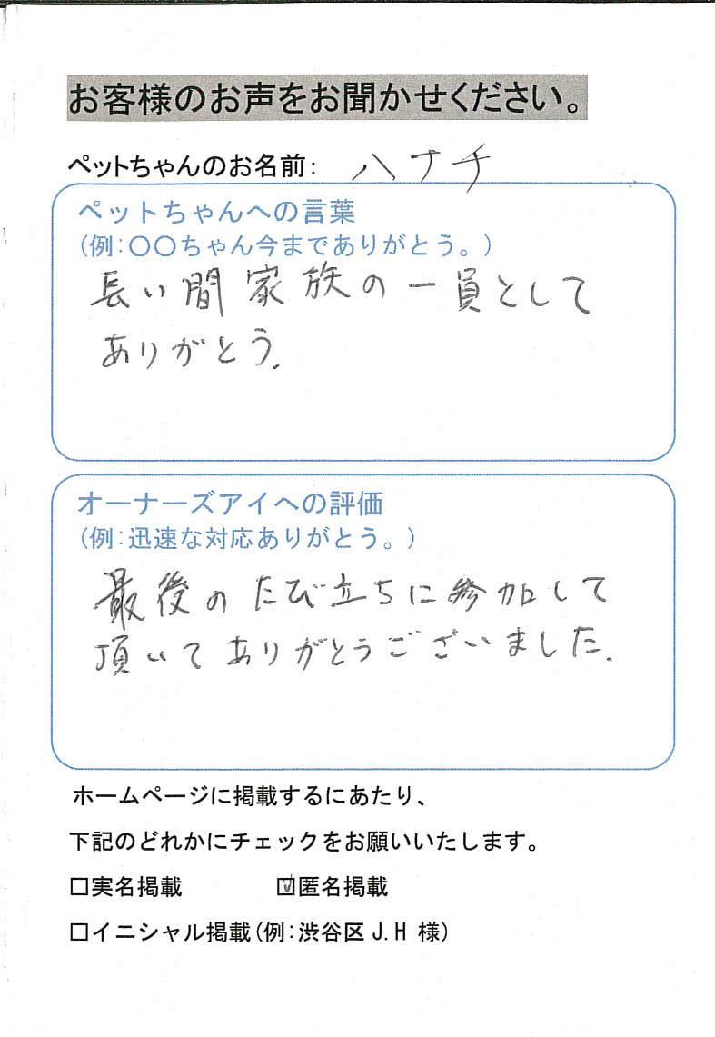 image-6 (3)